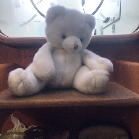 Teddy bear on the companionway